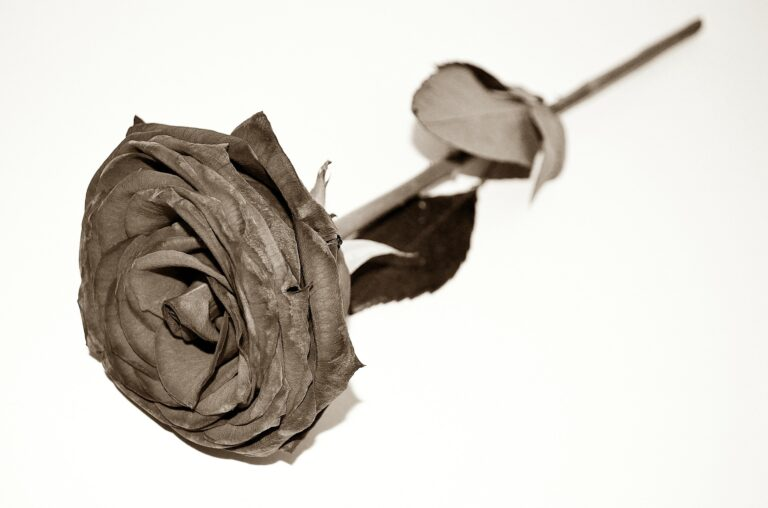 Death & Loss: What Actually Happens At The Time Of Death? (4 of 8)