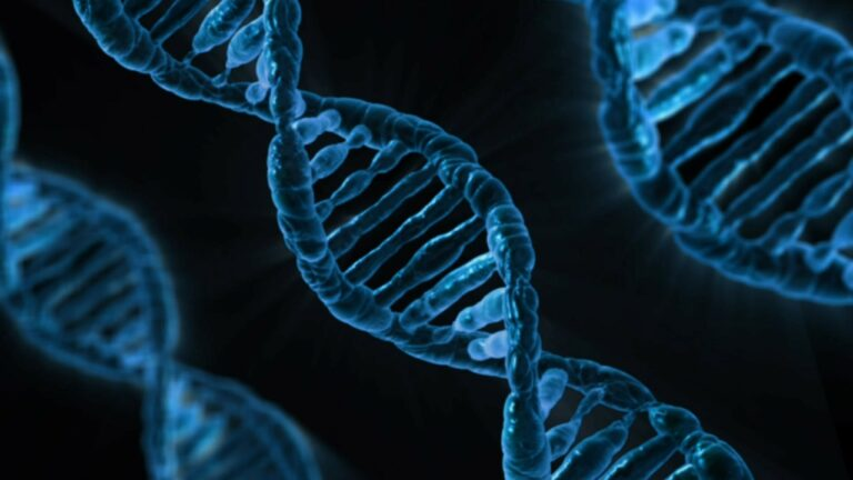 4 Genes Associated with Increased Risk of Colo-rectal Cancer Identified