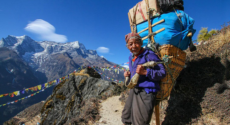 Who is a SHERPA?